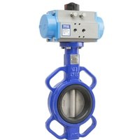 Cast Iron Spring Return Butterfly Valve with 316 Stainless Steel Disc