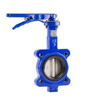 Lugged Cast Iron Butterfly Valve