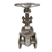 ANSI 150 Flanged Stainless Steel Gate Valve