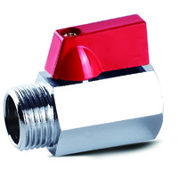 Mini Ball Valve M&F Ends